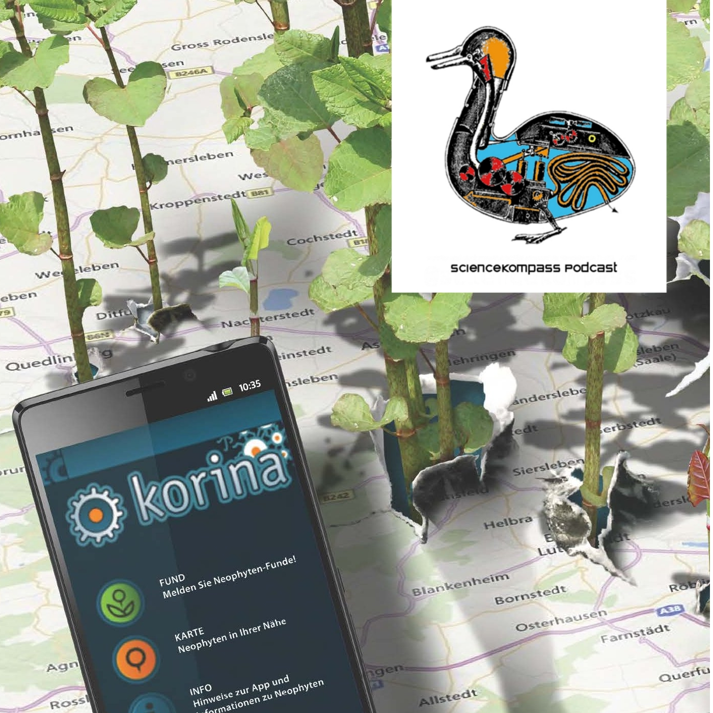 SciKom003 Neophyten – Invasion der Pflanzen